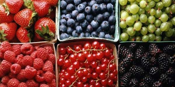 В Кременчуге появятся передвижные точки для продажи ягод