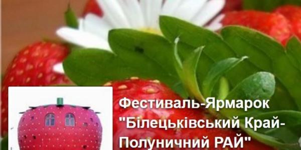 Клубничного борща можно будет поесть 11 июня под Кременчугом