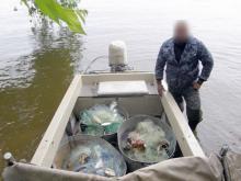 На выходных браконьеры поймали 100 кг рыбы