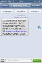 """В Кременчуге женщина """"выиграла"""" автомобиль"""