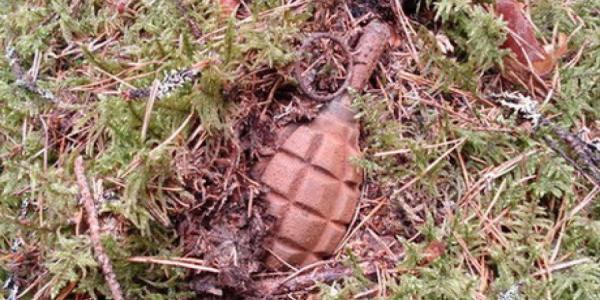 Под Кременчугом нашли гранату