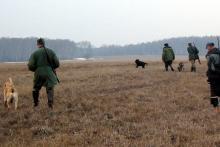 В Кременчуге самые низкие цены на охоту