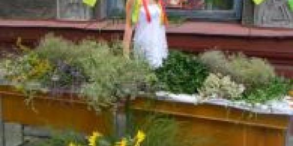 Кременчужан приглашают на мастер-класс по плетению венков