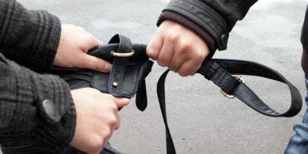 В кременчужанки вырвали сумку из рук,  у мужчины – украли дорогой смартфон