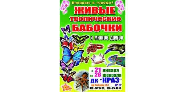 В Кременчуге состоится лето среди зимы