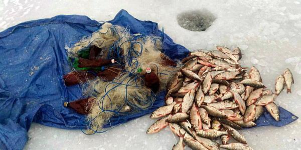 Водная полиция Кременчуга задержала браконьеров, которые нанесли ущерб на сумму около 19 тысяч гривень