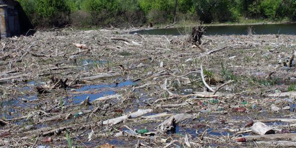 Псел начнут чистить от утонувших деревьев и мусора