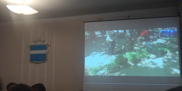 Кременчугские чиновники штрафуют пенсионеров, которые торгуют рассадой, чтобы выживать
