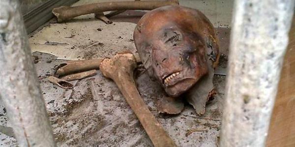 Мумифицированные тела людей нашли в шалаше на Полтавщине