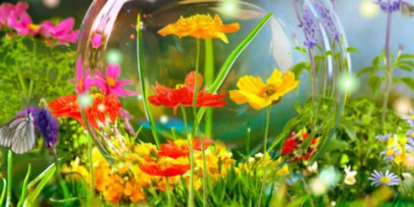 Стало известно, какой будет погода в Кременчуге на майские праздники