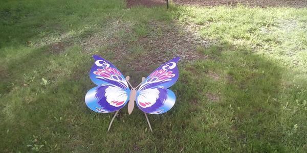 В Кременчуге поселились гигантские бабочки