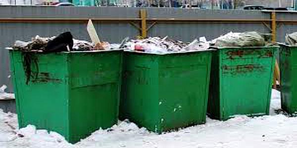 На Полтавщине в мусорном баке обнаружили тела двух младенцев