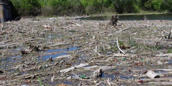 Псел під Кременчуком збираються очистити від сміття