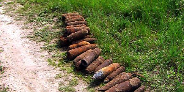 В Кременчугском районе фермер в поле нашел арсенал боеприпасов