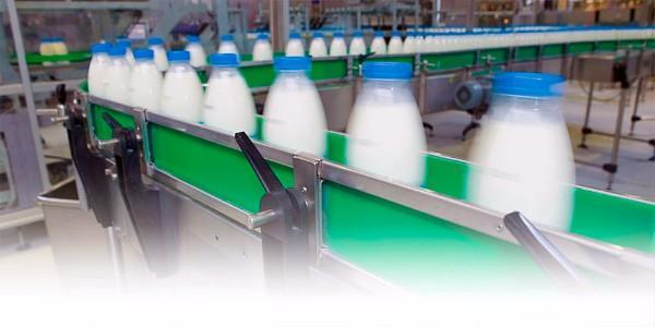 Китайці будуть ласувати продукцією Кременчуцького молокозаводу