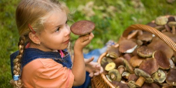 Дворічна кременчужанка отруїлася грибами