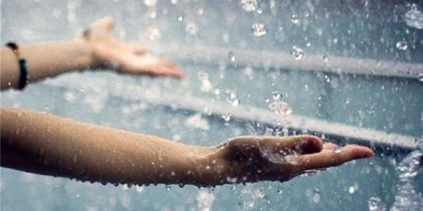 Дождик в Кременчуге обещает прибить тополиный пух