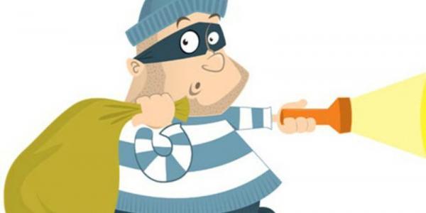У кременчужан украли сумку, iPhone6 и газонокосилку