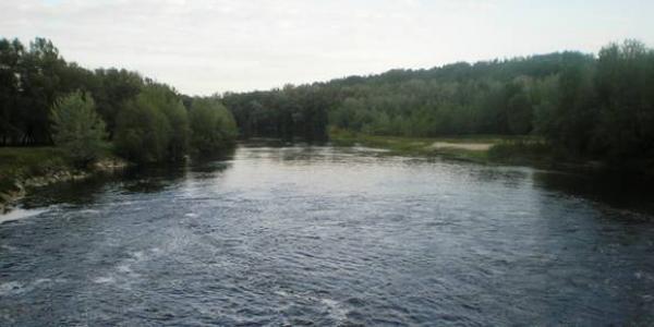 """Юнак відпочивав на річці разом із товаришем у районі садового товариства """"Берізка""""."""