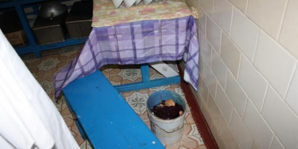 Когда ведро с помоями стоит у чистой посуды, этим все сказано - школа на Киевщине