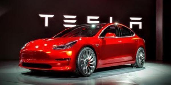 Мэр Малецкий не против пересадить чиновников исполкома на электромобили Tesla