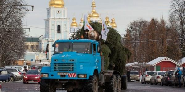 Кременчугский автомобиль КрАЗ привез в Киев главную елку Украины