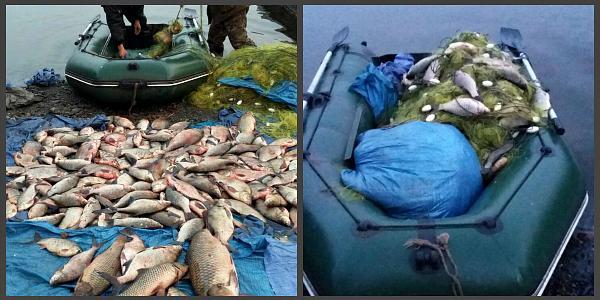 За сутки на Кременчугском море поймали семерых браконьеров