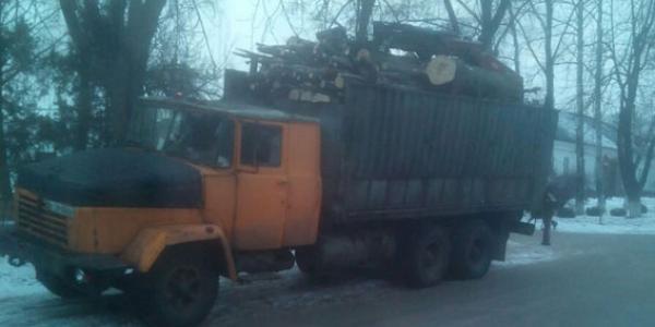 Полицейские задержали кременчужанина с незаконной древесиной