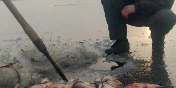 В Кременчуге браконьер «нарыбачил» на 5 тысяч гривень
