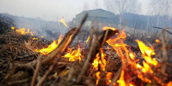 Кременчужан наказывают за разжигание костров в Кременчуге и в Киеве