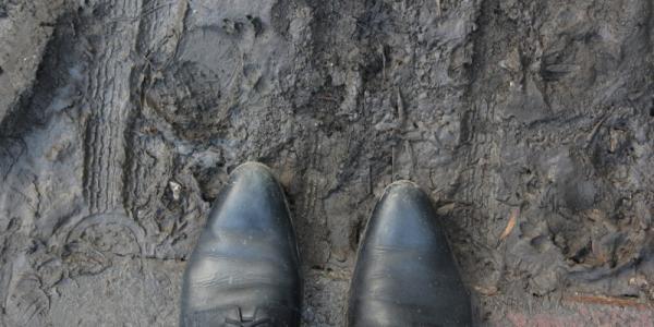 Пиддубная предлагает Шаповалову провести в грязи Большой Кохновки уроки экстремального вождения водителям КАТП-1628, скорой помощи и полиции