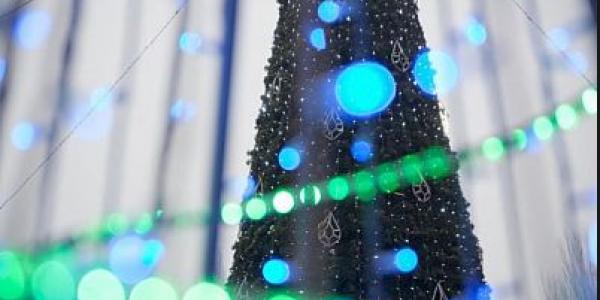 В Кременчуге будет четыре «главных» елки