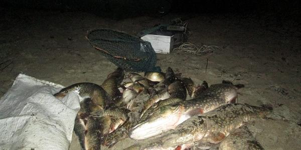 Под Кременчугом за электроловлю щуки поймали рыбака