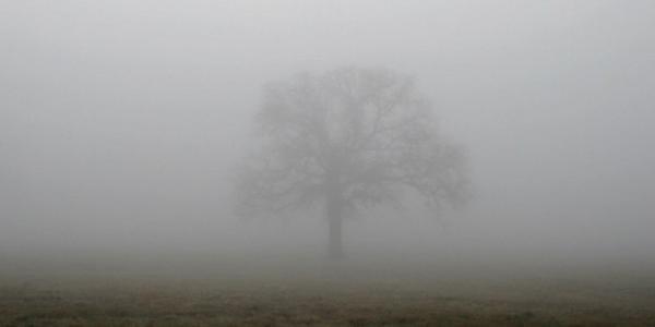 Слякотно-туманные выходные обещают в Кременчуге
