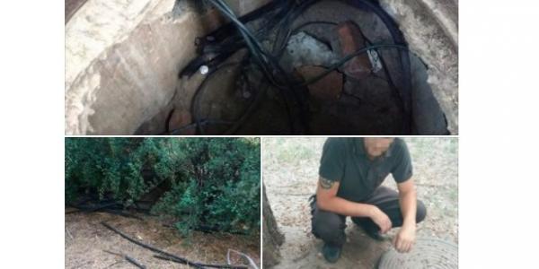 У Кременчуці спіймали крадія дротів в середині кабельного колодязя