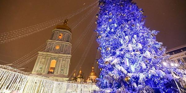 Стало известно, что ждет после праздников главную елку страны, которую в Киев привез КрАЗ