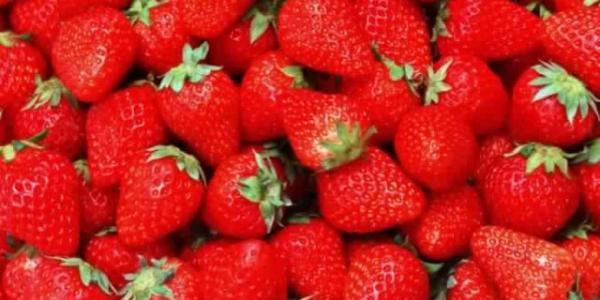 У мерії вирішують, де влітку організовано продаватимуть в Кременчуці полуницю