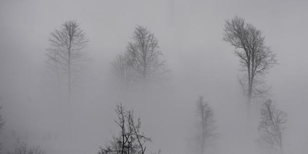 Різдво Кременчук зустріне в тумані