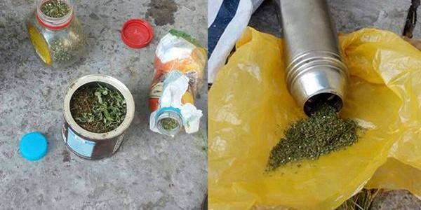 Поліцейським жінка пояснила, що всі нарковмісні рослини вона зберігала лише для себе.