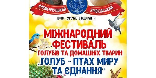 Кременчук завтра збере під «одне крило» неймовірних птахів зі всієї України