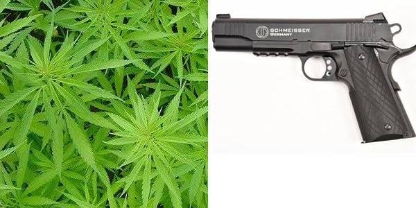 Кременчужанин вдома зберігав марихуану та пістолет – відбувся переляком та трьома роками умовно
