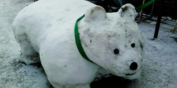 На Ново-Іванівському ринку створили сніговий шедевр