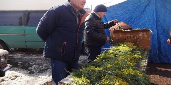 У Кременчуці букет з ведмедиків коштує дорожче ніж тюльпани