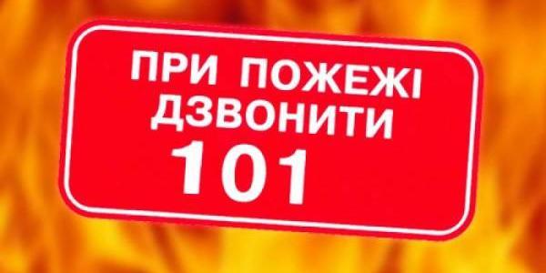 У Кременчуцькому районі пожежа у сараї ледь не знищила сусідську пасіку