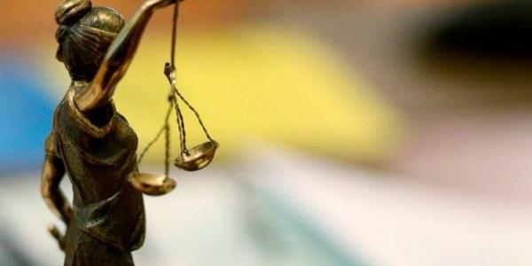 Крадіжок рахувати – не перерахувати, але судом звільнена з під варти