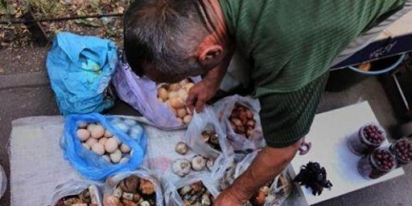 За продаж дикорослих грибів в Кременчуці – будуть штрафувати