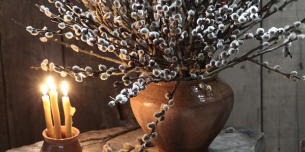 Вербное воскресенье: пересаживаем цветы и узнаем, каким будет лето