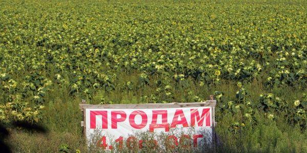 Земельна реформа: міфи та реальність