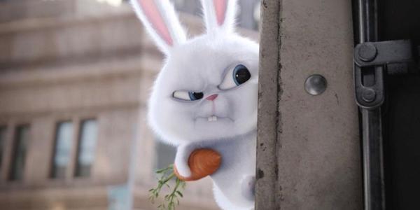 У потязі, що курсує через Кременчук, виявили одразу 36 «зайців»