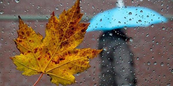 Погода на вихідні: у Кременчуці дощитиме